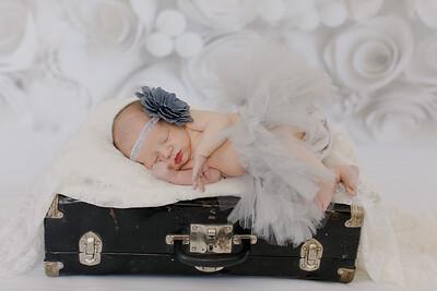 00017--©ADH Photography2017--BlakelyStagemeyer--Newborn
