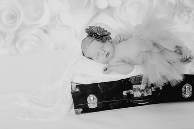 00006--©ADH Photography2017--BlakelyStagemeyer--Newborn