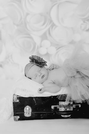 00012--©ADH Photography2017--BlakelyStagemeyer--Newborn