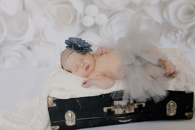 00003--©ADH Photography2017--BlakelyStagemeyer--Newborn
