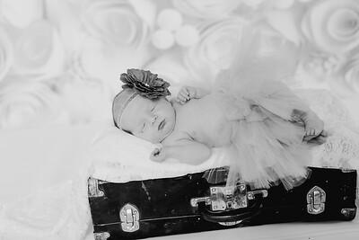 00002--©ADH Photography2017--BlakelyStagemeyer--Newborn