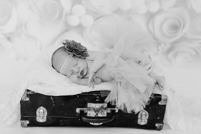 00018--©ADH Photography2017--BlakelyStagemeyer--Newborn