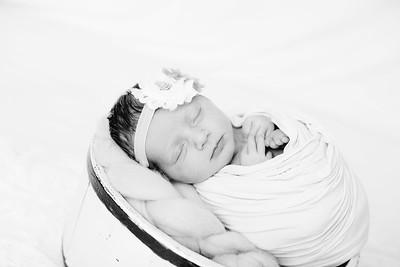00016--©ADHPhotography2018--BristolKisker--NewbornAndFamily--August17