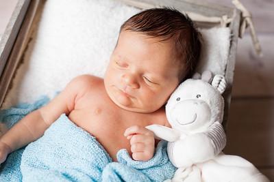 Callum {newborn session}