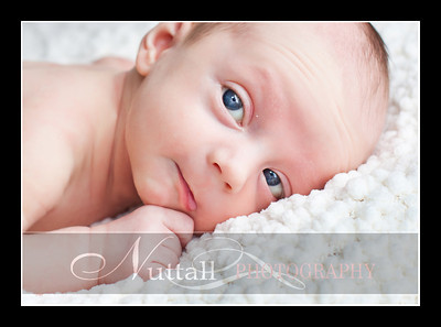 Cameron Newborn 17
