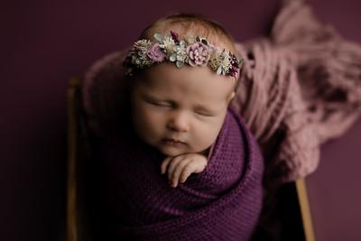 00009©ADHphotography2020--CollinsProvince--Newborn--January17