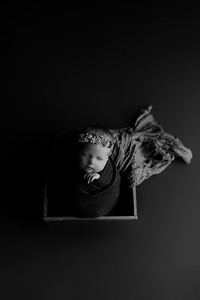 00006©ADHphotography2020--CollinsProvince--Newborn--January17bw