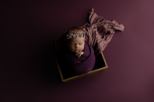 00002©ADHphotography2020--CollinsProvince--Newborn--January17