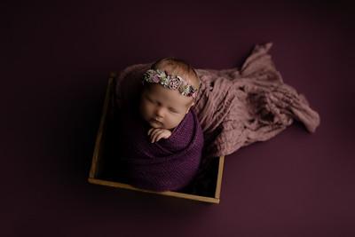 00007©ADHphotography2020--CollinsProvince--Newborn--January17
