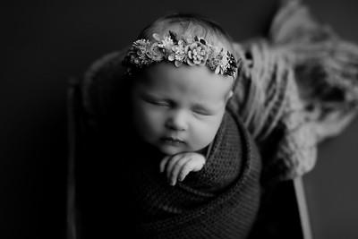00009©ADHphotography2020--CollinsProvince--Newborn--January17bw
