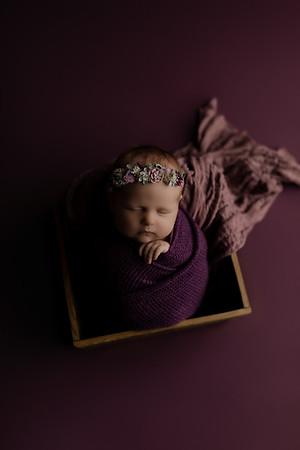 00004©ADHphotography2020--CollinsProvince--Newborn--January17