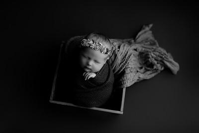 00007©ADHphotography2020--CollinsProvince--Newborn--January17bw