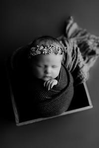 00005©ADHphotography2020--CollinsProvince--Newborn--January17bw