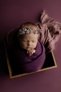 00005©ADHphotography2020--CollinsProvince--Newborn--January17