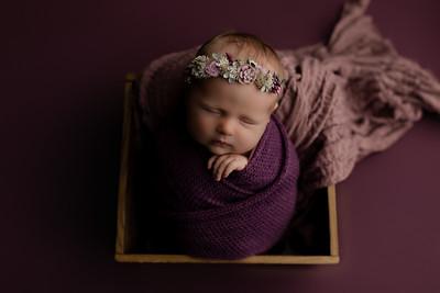 00008©ADHphotography2020--CollinsProvince--Newborn--January17
