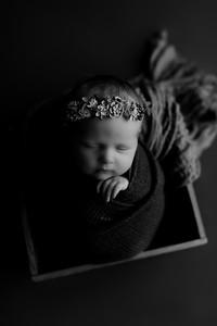 00001©ADHphotography2020--CollinsProvince--Newborn--January17bw