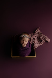 00006©ADHphotography2020--CollinsProvince--Newborn--January17