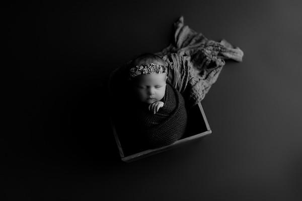 00002©ADHphotography2020--CollinsProvince--Newborn--January17bw