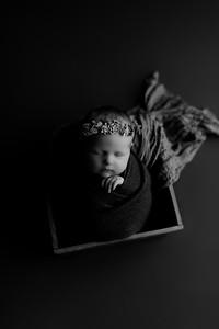 00004©ADHphotography2020--CollinsProvince--Newborn--January17bw