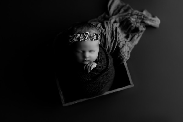 00003©ADHphotography2020--CollinsProvince--Newborn--January17bw