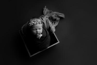 00010©ADHphotography2020--CollinsProvince--Newborn--January17bw