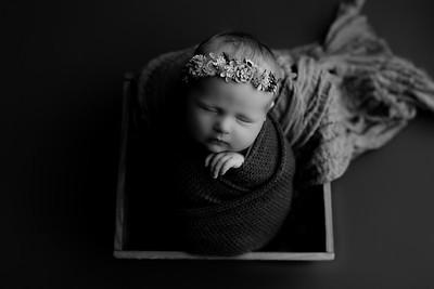 00008©ADHphotography2020--CollinsProvince--Newborn--January17bw