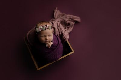00010©ADHphotography2020--CollinsProvince--Newborn--January17