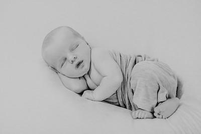 00010--©ADH Photography2017--CreightonWright--Newborn