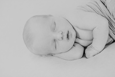 00006--©ADH Photography2017--CreightonWright--Newborn