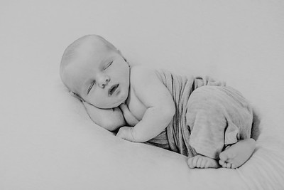 00012--©ADH Photography2017--CreightonWright--Newborn