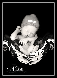 Cruz Newborn 104bw