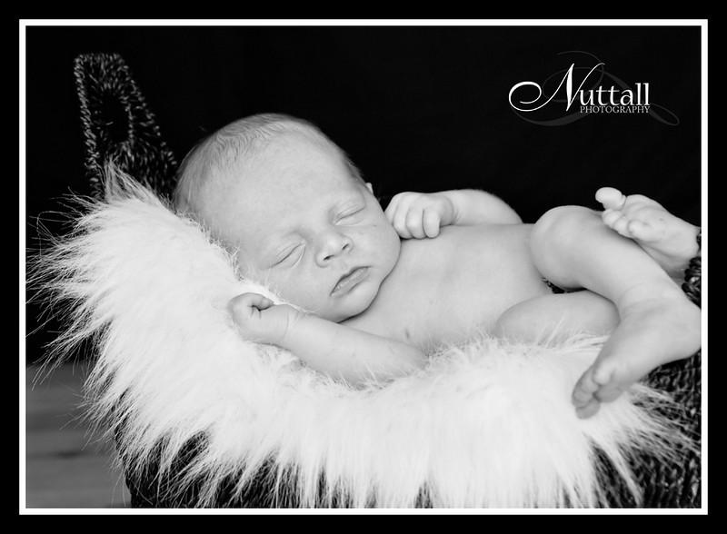 Cruz Newborn 069