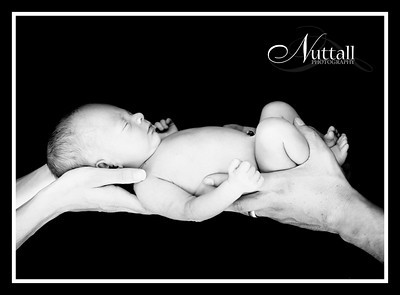 Cruz Newborn 033bw