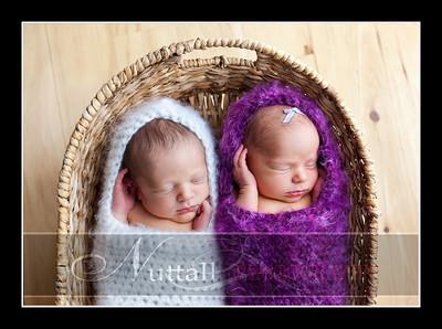 Dixon Twins -135