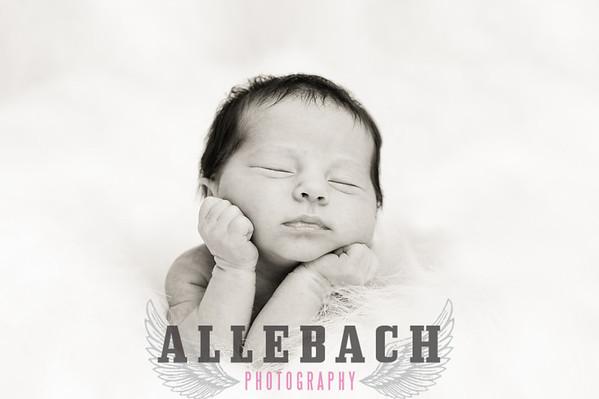 Elle Newborn Photography