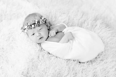 00010--©ADHPhotography2018--Esch--Newborn#2Preset