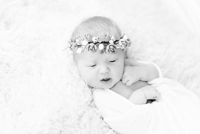 00012--©ADHPhotography2018--Esch--Newborn#2Preset