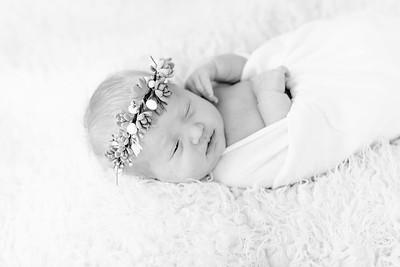 00004--©ADHPhotography2018--Esch--Newborn#2Preset