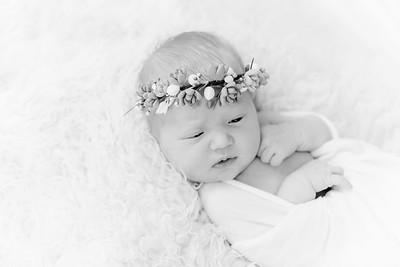 00010--©ADHPhotography2018--Esch--Newborn