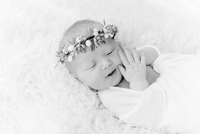 00012--©ADHPhotography2018--Esch--Newborn
