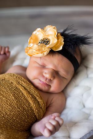 Esther {newborn session}
