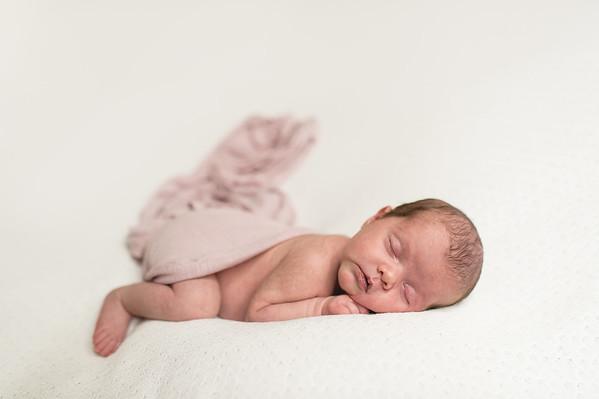 Evelyn D Newborn