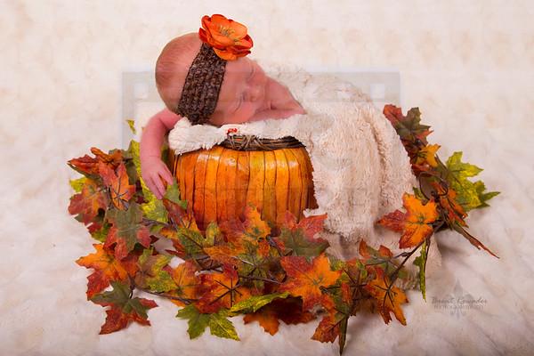 Everly Newborn Pic Sept 2013