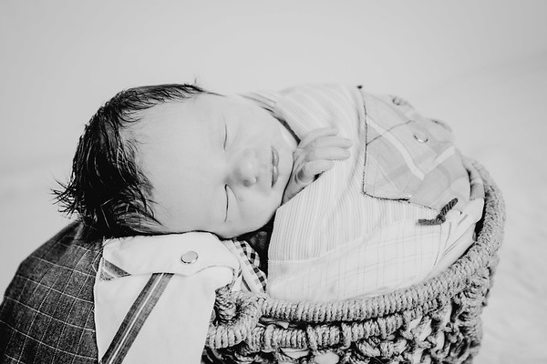 00018--©ADHPhotography2018--Fink-Newborn--2018May18