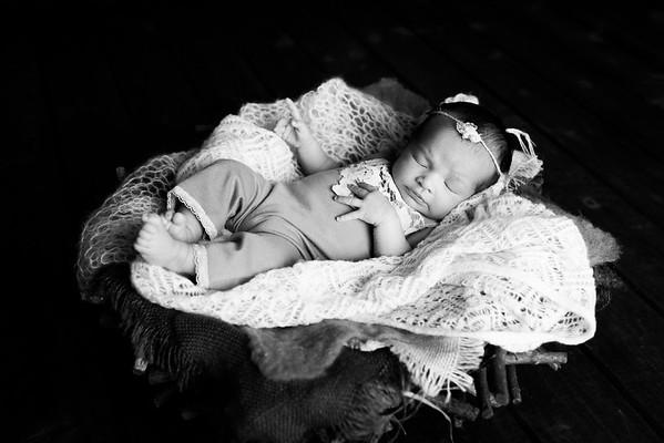 Finley Newborn