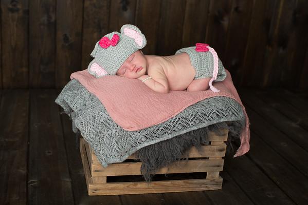 Gerber Newborn