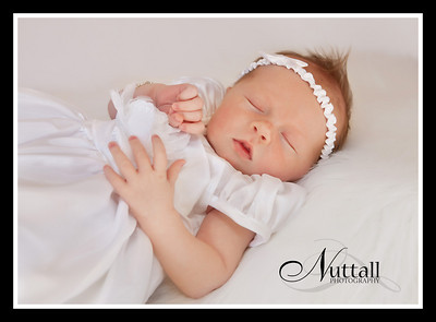 Hailey Newborn 146