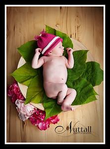 Hailey Newborn 106