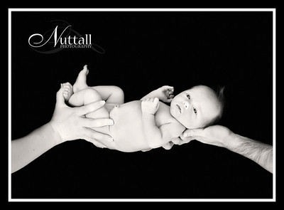 Hailey Newborn 049bw