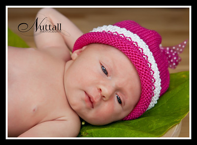 Hailey Newborn 120